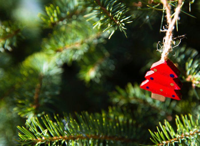 Frohe Weihnachten Berlin.Frohe Weihnachten Und Guten Rutsch Ins Neue Jahr Frauen Yoga Berlin